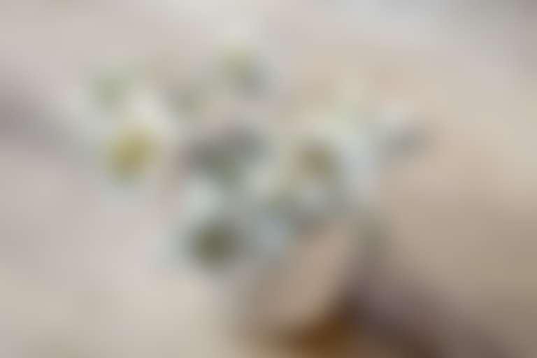 Букетик из цветов эдельвейса в белой вазе на деревянном столе