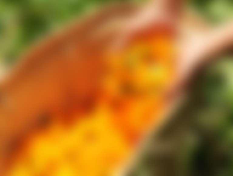 Цветки календулы в плетеной корзине в саду