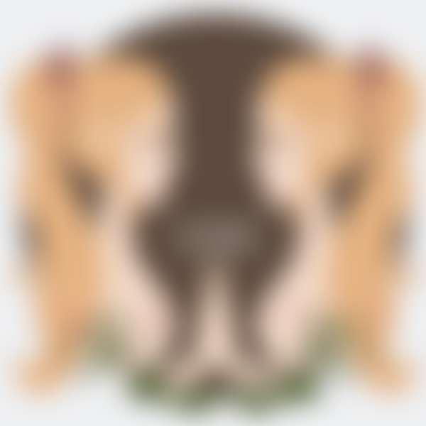 знак зодиака близнецы в виде девушек