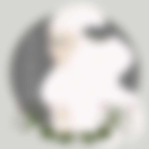 дева знак зодиака рисунок девушки