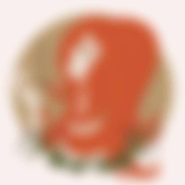 рисунок девушке в образе знака зодиака лев для бьюти гороскопа