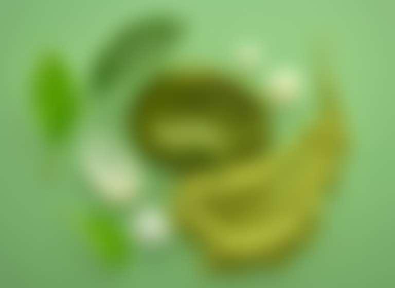 На зеленом фоне зеленая веточка, зеленый крем, зеленая смесь трав — символ французской косметики Garnier