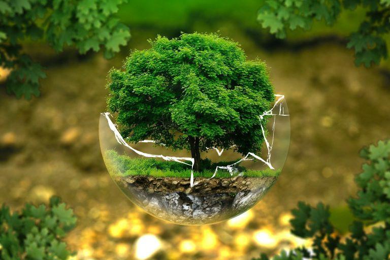 Экологичные бьюти-привычки в повседневной жизни