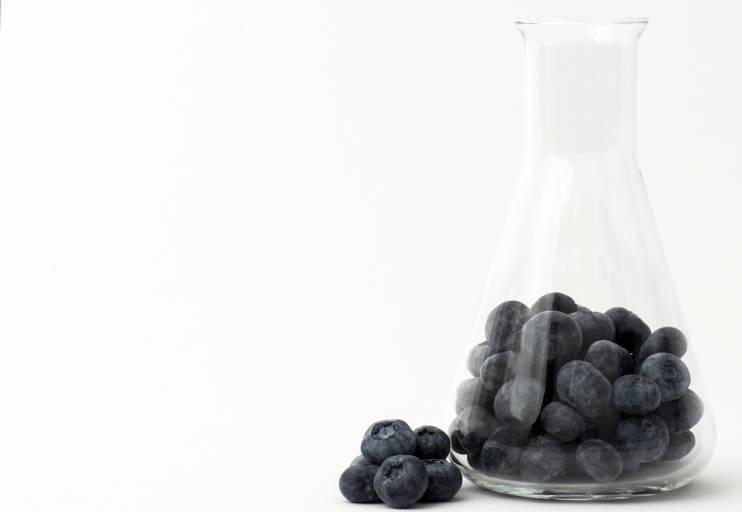 Ингредиент - черника