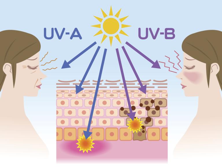 UVA- и UVB-лучи - схемы