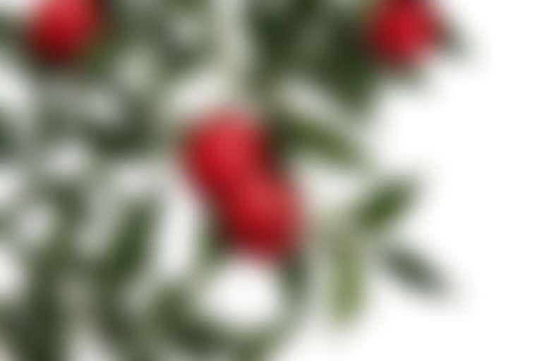 ветка иглицы ягоды используют от отеков лица