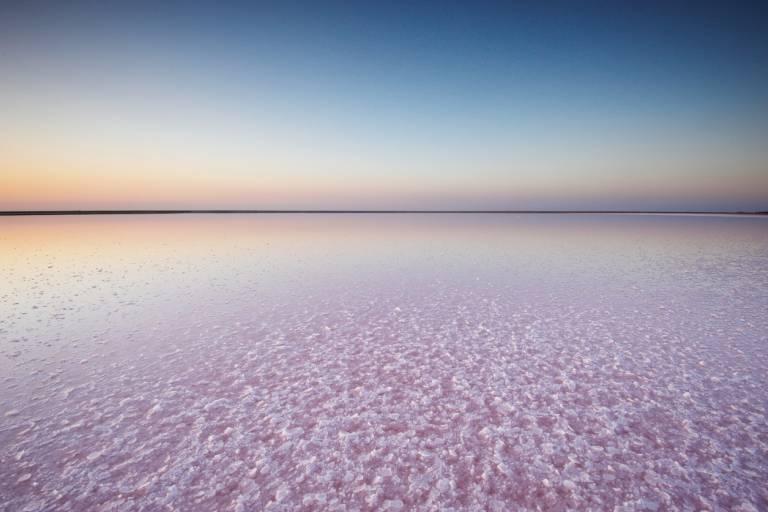 Розовое озеро Сасык