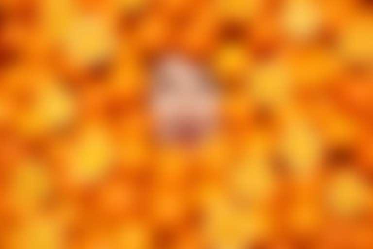 Лицо в апельсинах