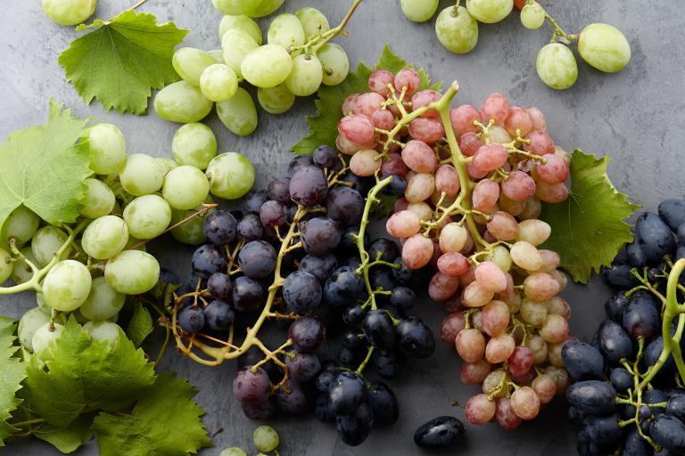 семена винограда полезные свойства